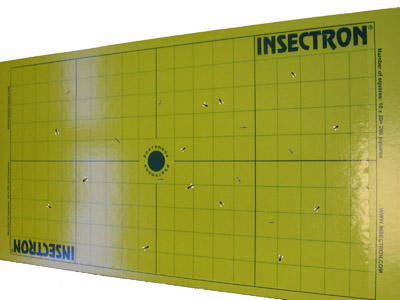Plaque de glue INSECTRON
